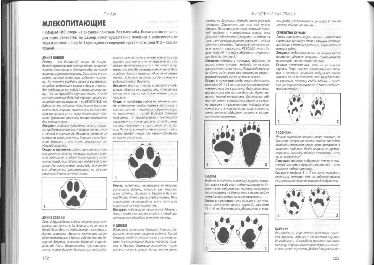 Книга Про Кудо С Инструкциями